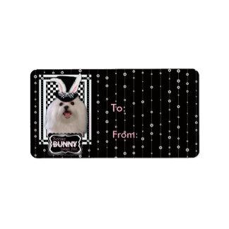 Pascua - algún conejito le ama - maltesa etiquetas de dirección