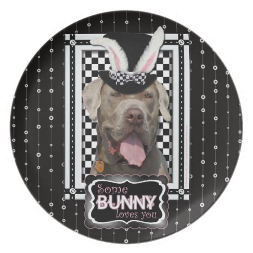 Pascua - algún conejito le ama - mastín plato