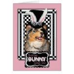 Pascua - algún conejito le ama pastor australiano