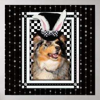 Pascua - algún conejito le ama pastor australiano posters