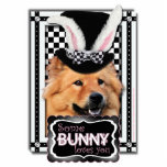 Pascua - algún conejito le ama - perro chino de pe escultura fotográfica