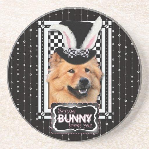 Pascua - algún conejito le ama - perro chino de pe posavasos personalizados