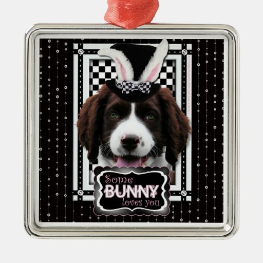 Pascua - algún conejito le ama - perro de aguas de adorno cuadrado plateado