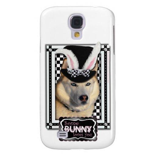 Pascua - algún conejito le ama - perro esquimal
