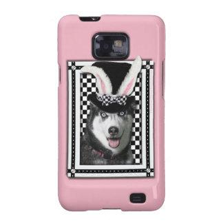 Pascua - algún conejito le ama - perro esquimal samsung galaxy SII fundas