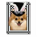 Pascua - algún conejito le ama - Pomeranian Escultura Fotográfica