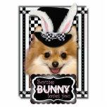 Pascua - algún conejito le ama - Pomeranian Esculturas Fotográficas