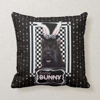 Pascua - algún conejito le ama - Schnauzer Cojines