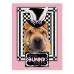 Pascua - algún conejito le ama - Shar Pei Postal