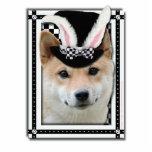Pascua algún conejito le ama - Shiba Inu Esculturas Fotográficas