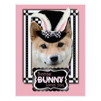 Pascua - algún conejito le ama - Shiba Inu Tarjetas Postales