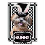 Pascua - algún conejito le ama - ShihPoo Esculturas Fotográficas