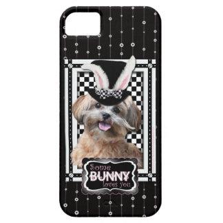 Pascua - algún conejito le ama - ShihPoo iPhone 5 Funda