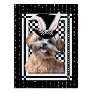 Pascua - algún conejito le ama - ShihPoo Postal