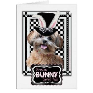 Pascua - algún conejito le ama - ShihPoo Tarjeta De Felicitación