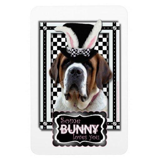 Pascua - algún conejito le ama - St Bernard Imán Flexible