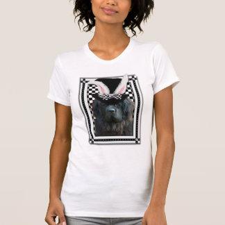 Pascua - algún conejito le ama - Terranova Camisetas