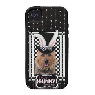 Pascua - algún conejito le ama - Terrier iPhone 4 Carcasa