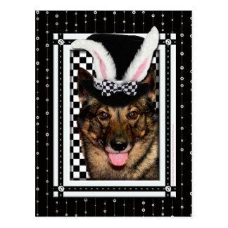Pascua - algún conejito le ama - Vallhund Postal