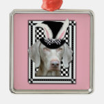 Pascua - algún conejito le ama - Weimaraner Ornamentos De Navidad