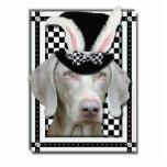 Pascua - algún conejito le ama - Weimaraner Esculturas Fotográficas