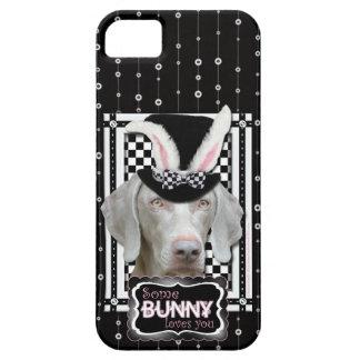 Pascua - algún conejito le ama - Weimaraner iPhone 5 Protector