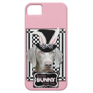 Pascua - algún conejito le ama - Weimaraner iPhone 5 Carcasa