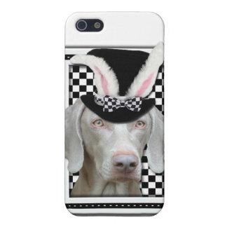 Pascua - algún conejito le ama - Weimaraner iPhone 5 Carcasas