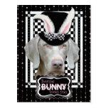 Pascua - algún conejito le ama - Weimaraner Postal