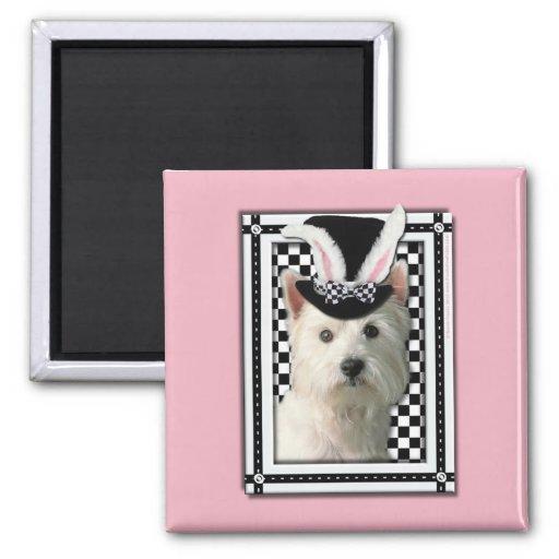 Pascua - algún conejito le ama - Westie Imán