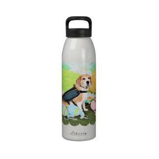 Pascua - beagle - Brady Botallas De Agua