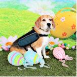 Pascua - beagle - Brady Esculturas Fotográficas