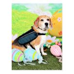 Pascua - beagle - Brady Postales