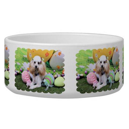 Pascua - caniche - carro tazones para perro