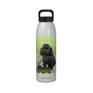 Pascua - caniche - joven botella de agua reutilizable