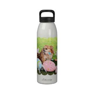 Pascua - chihuahua - Carlito Botella De Agua Reutilizable