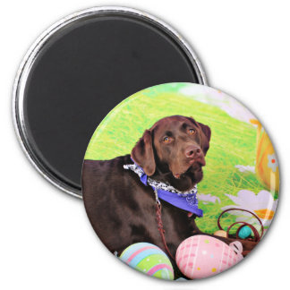 Pascua - chocolate Labrador - Hershey Imán De Nevera