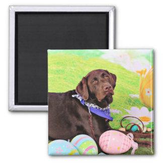 Pascua - chocolate Labrador - Hershey Imán De Frigorifico