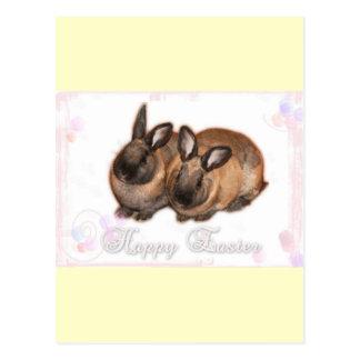 Pascua feliz del conejito de pascua con los rosas postal