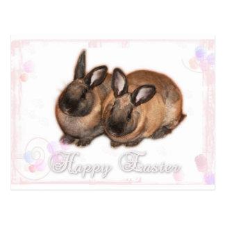 Pascua feliz del conejito de pascua con los rosas tarjeta postal