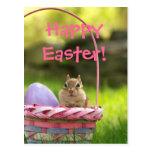 Pascua feliz poco Chipmunk 2 Postal