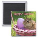 Pascua feliz poco Chipmunk Iman De Frigorífico
