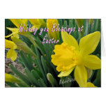 Pascua Jonquil Felicitaciones