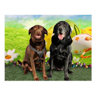 Pascua - Labrador - Jack y Diane Postal