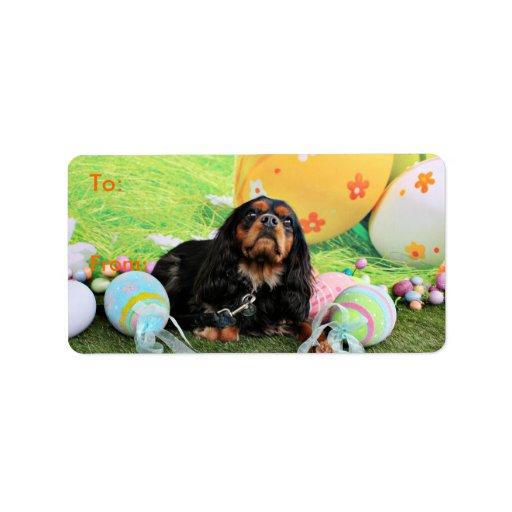 Pascua - perro de aguas de rey Charles arrogante - Etiqueta De Dirección