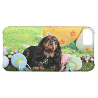 Pascua - perro de aguas de rey Charles arrogante -