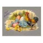 Pascua - polluelos, huevos y gallo - postal antigu
