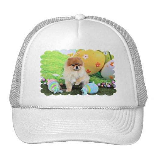 Pascua - Pomeranian - Dexter Gorros Bordados