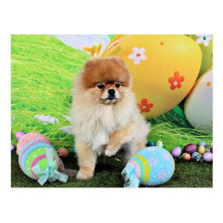 Pascua - Pomeranian - Dexter Postal