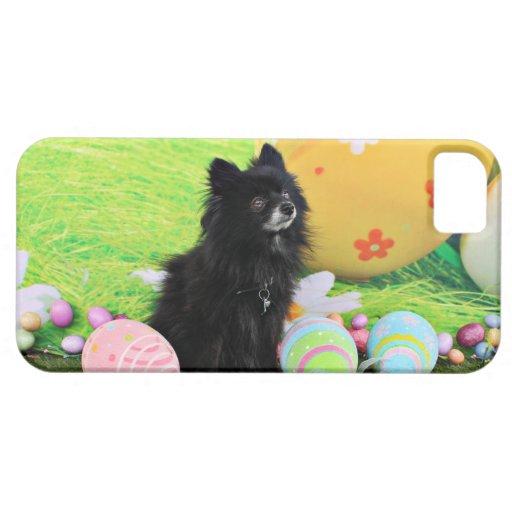 Pascua - Pomeranian - oso iPhone 5 Case-Mate Coberturas